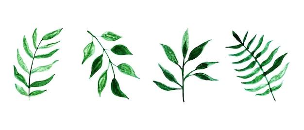 Ensemble de feuilles d'aquarelle de vecteur