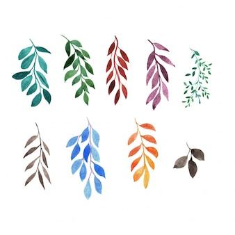 Ensemble de feuilles d'aquarelle