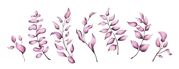 Ensemble de feuilles aquarelles roses
