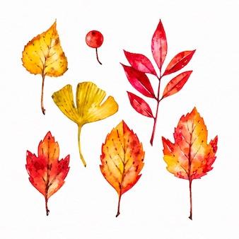 Ensemble de feuilles d'automne aquarelle