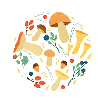 Ensemble de feuilles d'automne de baies, d'aiguilles de pin et de champignons. récolte d'automne en forêt