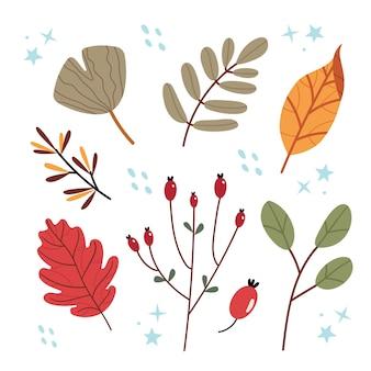 Ensemble de feuilles d'automne herbier sur fond blanc ensemble de feuilles jaunes, orange et rouges.
