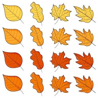 Ensemble de feuilles d'automne isolé