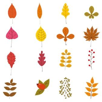 Ensemble de feuilles et de baies d'automne colorées mignonnes couleurs brun rouge orange jaune