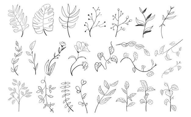 Ensemble de feuilles botaniques dessinées à la main doodle wildflower