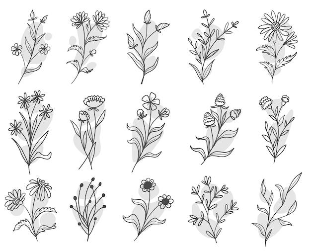 Ensemble de feuilles botaniques doodle dessin au trait de fleurs sauvages