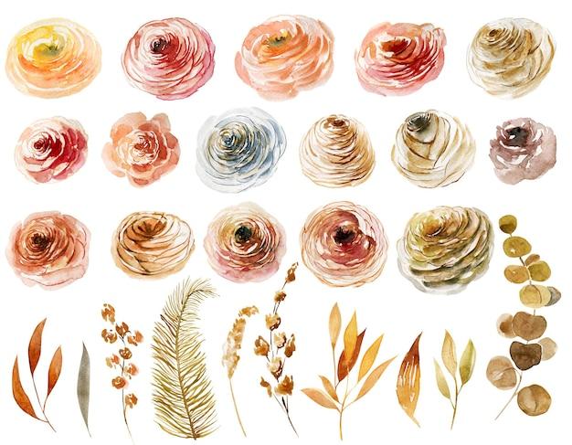 Ensemble de feuilles et de branches de roses aquarelles peintes à la main illustrations isolées