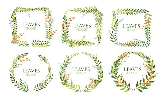 Ensemble de feuilles cadre isolé sur fond blanc