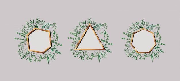 Ensemble de feuilles et cadres géométriques dorés