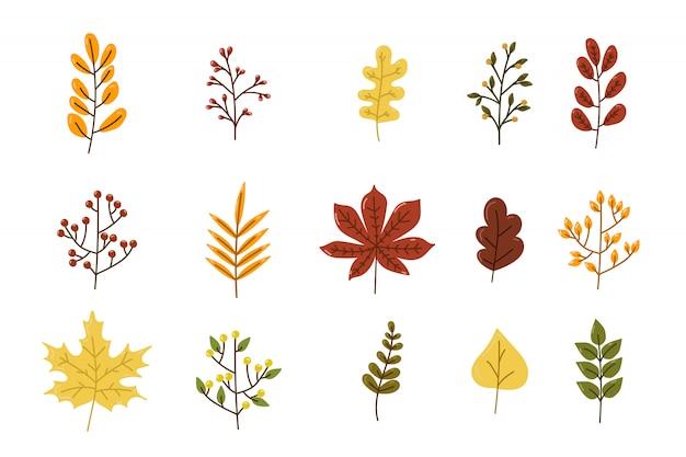Ensemble de feuilles colorées d'automne isolé