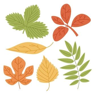 Ensemble de feuilles colorées dessinées à la main