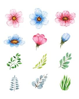 Ensemble de feuilles et de fleurs aquarelle à la main