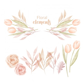 Ensemble de feuilles et de fleurs aquarelles.