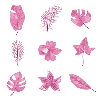 Ensemble de feuilles et de fleurs tropicales roses.
