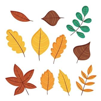 Ensemble de feuilles de forêt dessinés à la main