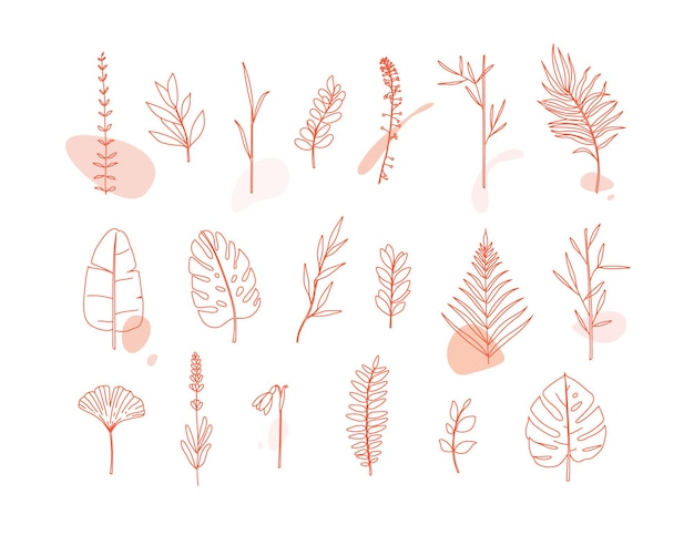 Ensemble de feuilles de formes différentes dans un style plat minimalisme sur fond blanc