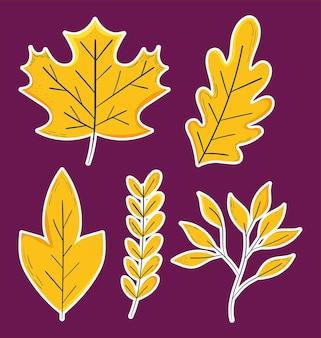 Ensemble de feuilles jaunes