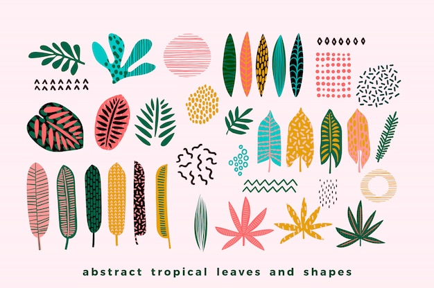 Ensemble de feuilles tropicales abstraites