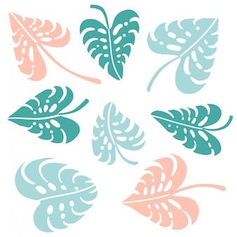 Ensemble de feuilles vertes, bleues et roses de plante de jungle tropicale de monstera. illustration plate isolée sur blanc. forme de coeur.