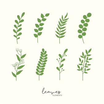 Ensemble de feuilles vertes dessinées à la main et floral.