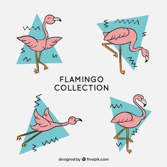 Ensemble de flamants roses avec différentes postures