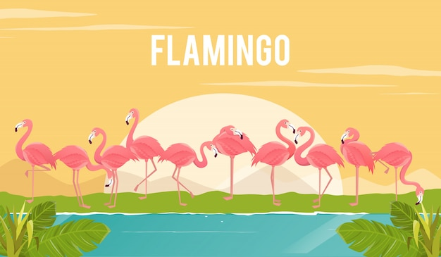 Ensemble de flamants roses sur fond. illustration.