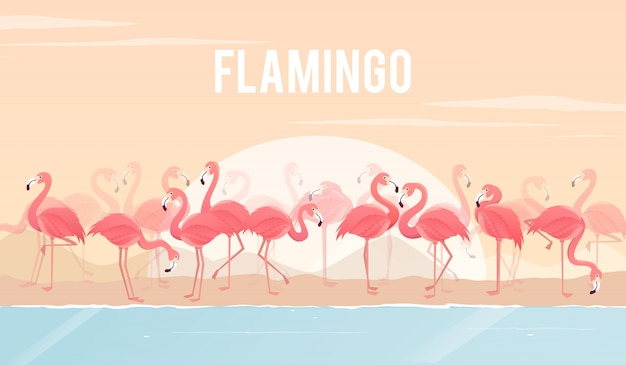 Ensemble de flamants roses sur fond