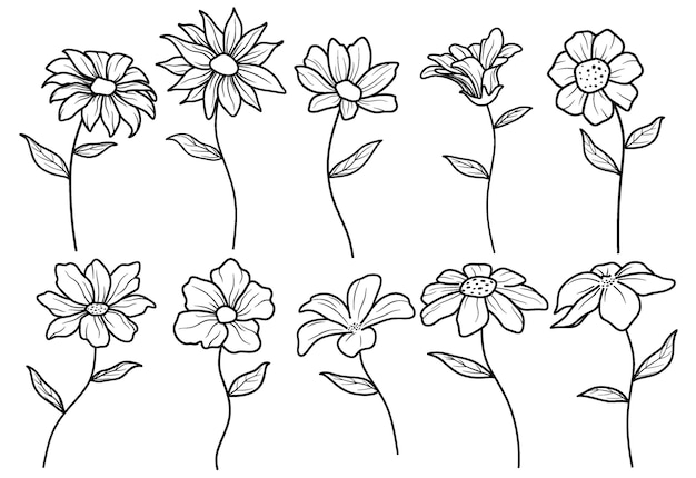 Ensemble de fleur de tirage à la main