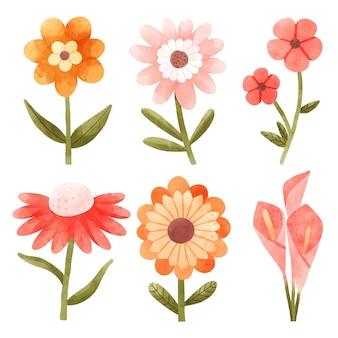 Ensemble De Fleurs Aquarelle Peintes à La Main Vecteur gratuit
