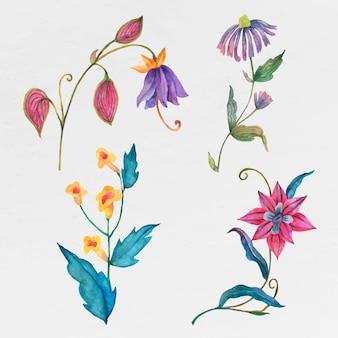 Ensemble de fleurs aquarelles colorées