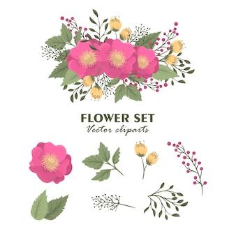 Ensemble de fleurs clipart mignon bouquets isolés floraux