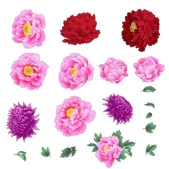 Ensemble de fleurs décoratives de style chinois