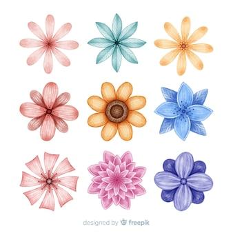 Ensemble de fleurs dessinées à la main aquarelle