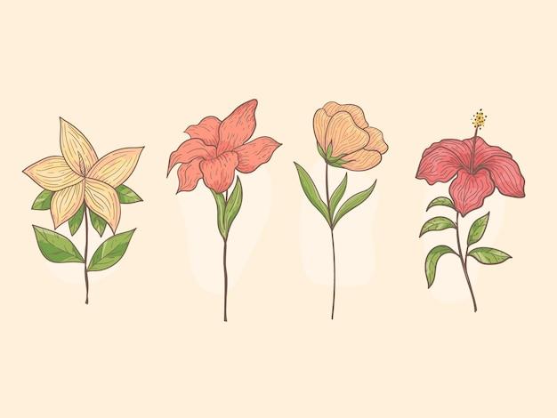 Ensemble de fleurs dessinées à la main