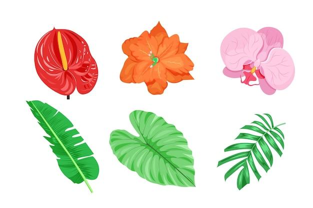 Ensemble de fleurs et de feuilles tropicales