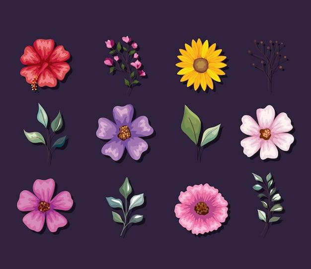 Ensemble de fleurs et de feuilles
