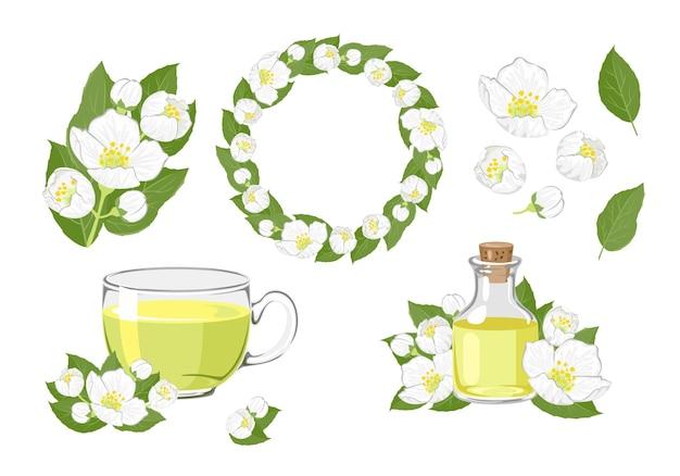 Ensemble de fleurs de jasmin, couronne, thé et huile essentielle.