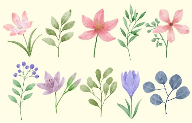 Un ensemble de fleurs peintes à l'aquarelle pour accompagner diverses cartes et cartes de vœux.