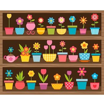 Ensemble de fleurs en pots sur étagère en bois