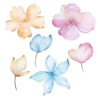 Ensemble de fleurs printanières tendres aquarelle, nuances pastel.