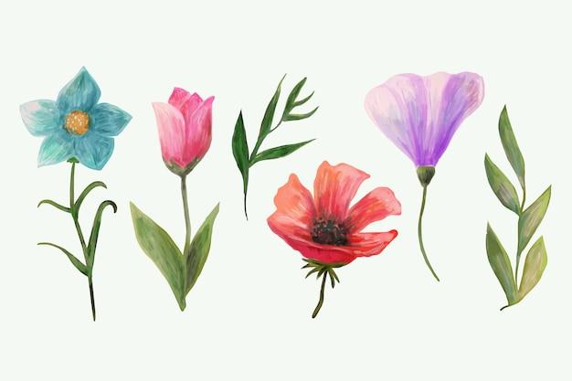 Ensemble de fleurs de printemps aquarelle