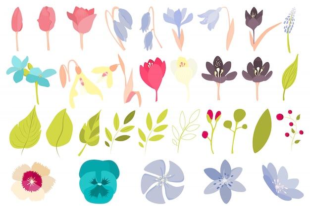 Ensemble De Fleurs De Printemps. Belles Dlowers Colorées Sur Blanc. Vecteur Premium
