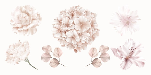 Ensemble de fleurs roses d'hortensia, rose et lys