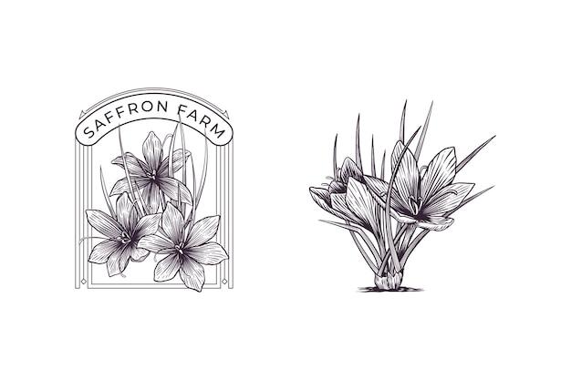 Ensemble de fleurs de safran logo dessiné à la main