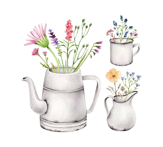 Ensemble de fleurs sauvages en cruche isolé sur blanc