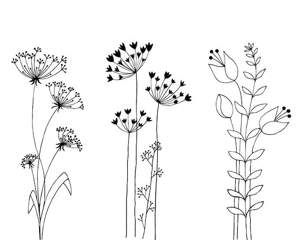Ensemble de fleurs sauvages dessinés à la main