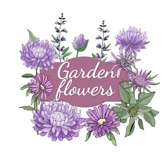 Ensemble floral. été et printemps isolés fleurs et herbes de jardin avec aster, sauge, huître.