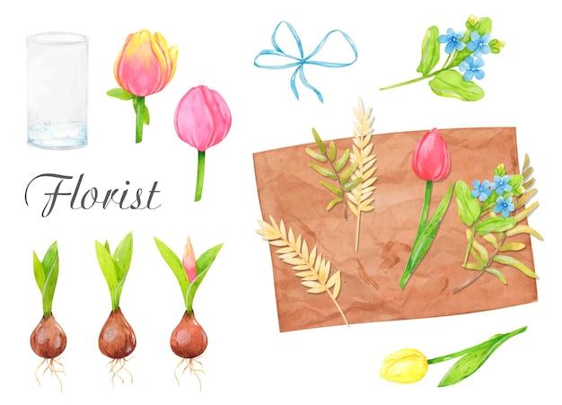 Ensemble floral d'illustrations aquarelle fleurs tulipes une composition de fleurs