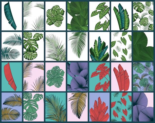 Ensemble de fond de feuilles d'été tropical avec des plantes de la jungle