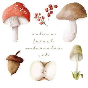 Ensemble de forêt d'automne aquarelle